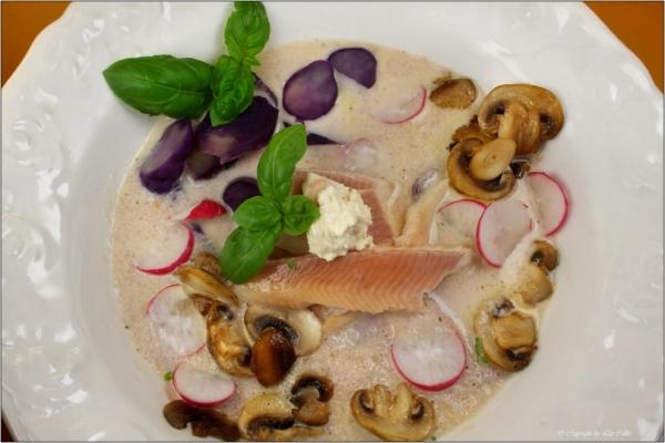 Radieschensuppe mit Vitelotte, Pilzen, Räucherforelle und Meerrettich © Liz Collet