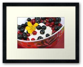 Vanillequark mit frischen Johannisbeeren © Liz Collet, Johannisbeeren, Liz Collet Foodphotography, Liz Collet Foodfotografie, Johannisbeeren, Topfen, Quark, Quarkspeise, Milchprodukt,