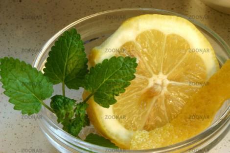 Zitrone © Liz Collet