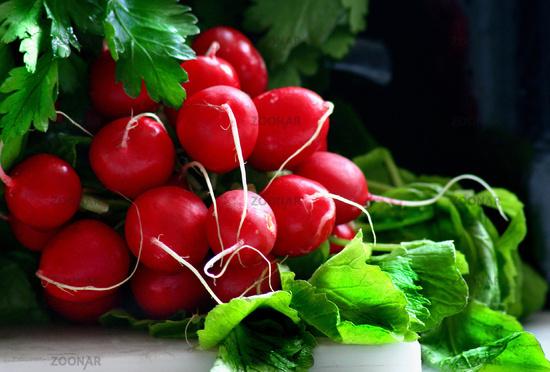 nahrung, food, red, green, lecker, blatt, gesund, healthy, frisch, gesundheit, salad, salat, wurzeln, diet, essen, leaves, fresh, brassicaceae, scharf, vital, vegetables, lebensmittel, knolle, bio, blätter, parsley, petersilie, gemüse, nutzpflanze, biologisch, kreuzblütengewächs, vitaminreich, bund, abnehmen, radieschen, vegetarisch, zutat, beilage, vorspeise, vegetarian, leicht, kalorienarm, roh, vitamin c, ätherische öle, brotbelag, rettich, wurzelgemüse, salatzutat, senföl, speicherknolle, radies, radishes, feldfrüchte, raphanus sativus, radieserl, radieschenblätter, radieschensalat, herbals, radieschenkraut, radish leaves, radieschenwurzeln, radish roots