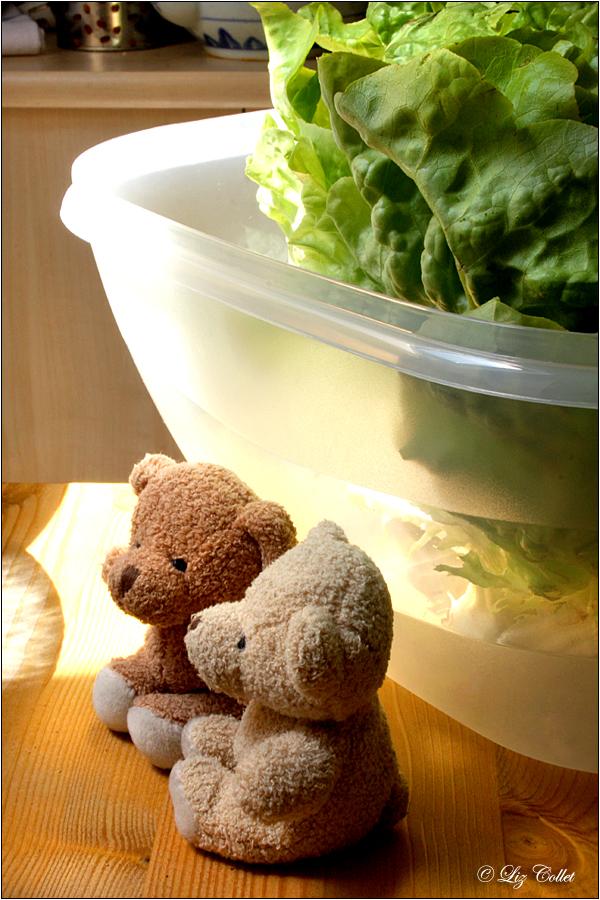Bäriges aus der grünen Zutatenliste © Liz Collet, Salat, Bären, Bärchen, Salatschüssel, Lollo Verde, vegan, vegetarisch, Vitamine
