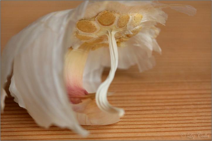 Knoblauch © Liz Collet