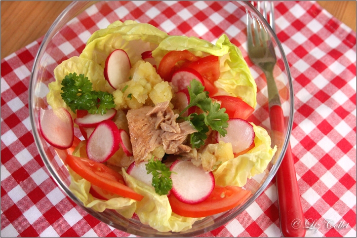 © Liz Collet, Kartoffelsalat, Blattsalat, Salad, Radieschen, Radieserl, Petersilie, parsley, Radish, radishes, kariertes Tischtuch, Serviette, Set, Tischset, Thunfisch, Tonno, Tomate, Petersilie, potatoe salad, tomatoes,Kartoffeln, ernährung, essen, grundnahrungsmittel, grün, kochen, lebensmittel, nahrung, nahrungsmittel, zutat,still life, zutaten, symbol, gesundheit, Food, Fotografie, gastronomie, Gemüse, Genuss, gesund, Landküche, preiswert, Produkt, Regionale Küche, Restaurant, Warenkunde, nutrition, ingredients, kräuter, fooddesign, foodstyling, speise, hauptgericht, fresh, vegetable, Liz Collet, menü, küche, europäische küche, ernähren, gewürz, culinary, lunch, dinner, tomaten, regional, ländlich, pomodori, haushalt, arbeitsplatz, restaurantküche, spicy, herbs, PFEFFER, herbal, food photography, gastronomy, kochausbildung, gastronomieausbildung, lebensmittelfotografie, gastronomiefotografie, rezeptfotografie, cooking seminar, cook school, Ferienkochkurs, Landhausküche, culinary photography, Rezeptfotos, arbeit, beruf, innenaufnahme, ausbildung, speisen, kochbuch, diner, foodphotography, kulinarische fotografie, foodfotografie für gastronomie, foodfotographer, fotografie für gastronomie, fotografie für restaurants, lebensmittelkompetenz, ferienküche, preiswerte rezepte, Regionalsiegel,