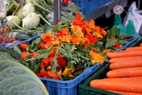 Kapuzinerkresse am Markt in Kaiserslautern © Liz Collet
