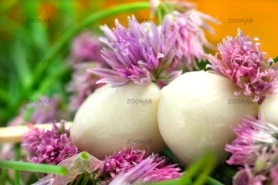 Mozzarella-Schnittlauchblüten-Sticks © Liz Collet